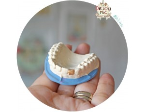 Magnet personalizat pentru dentisti